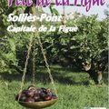 Fête de la figue (version complete) - sollies-pont