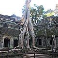 #3 cambodge ta phrom