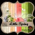 Little spring