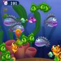 <b>Hungry</b> Fish : un jeu de réflexion passionnant !