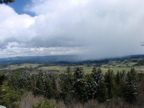 2008 04 14 Vu depuis le Pic du Lizieux, arbre enneigé et averse au loin