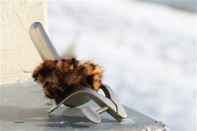 Spec à la neige