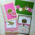Cartes Blouses Roses 2010