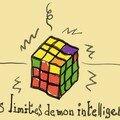 Les limites de mon intelligence