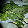 legumes recup (3)