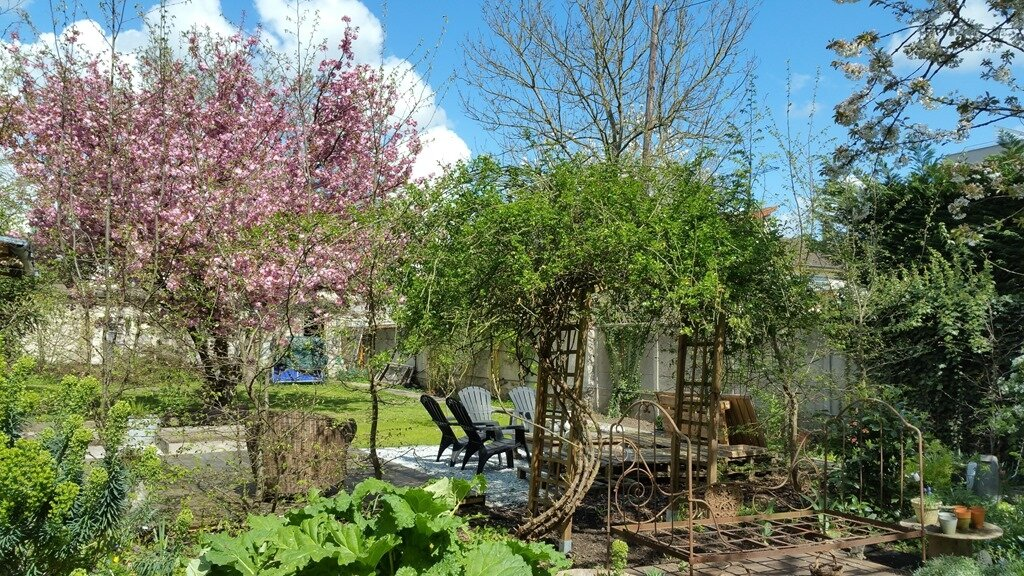 Windows-Live-Writer/Joli-printemps-au-jardin-_601C/20170402_133713_2
