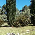 Chambre d'Hôtes le Pey Blanc à Aix en Provence