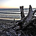 Sur la plage abandonnée