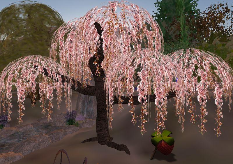 arbre_001