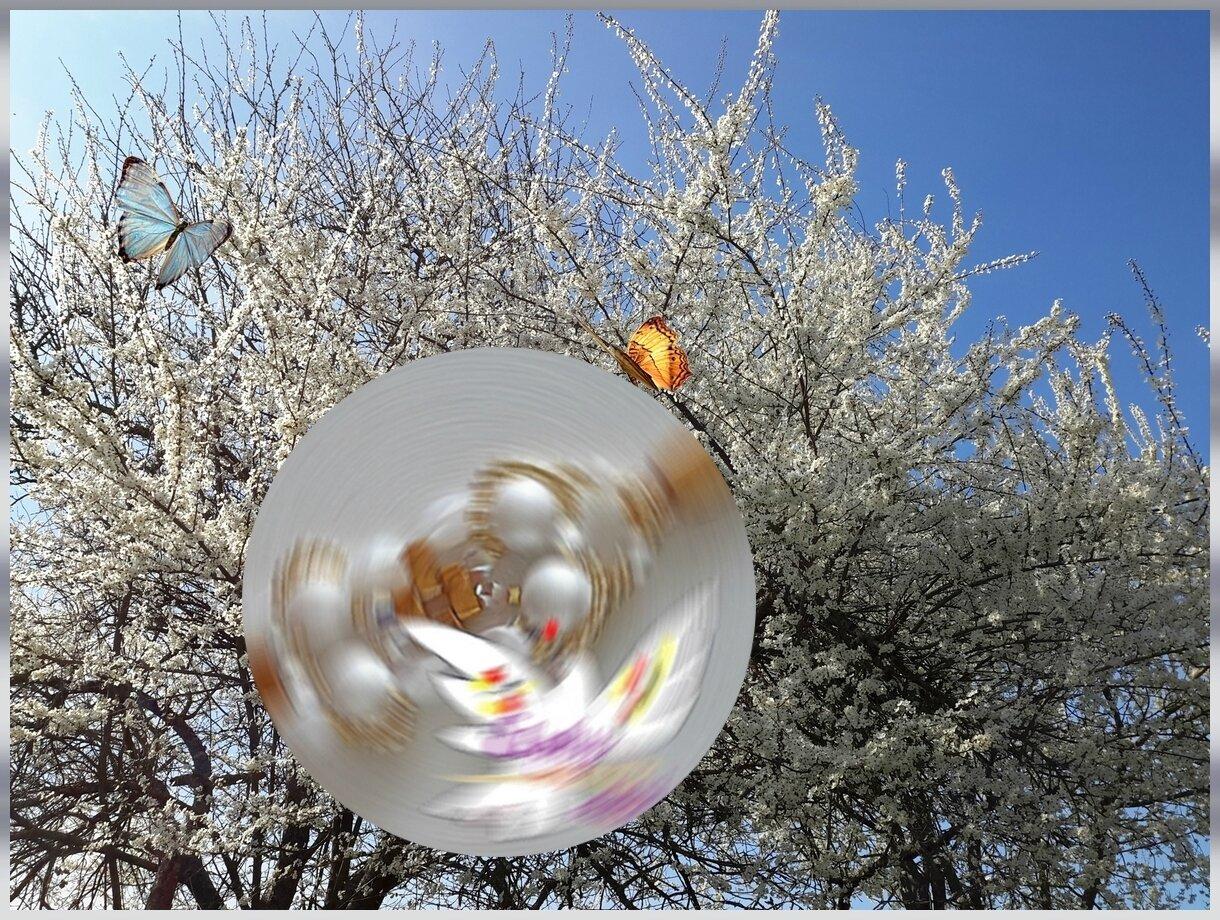 cerisierpub