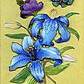 lys bleu tissu et serviette301