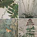 Exposition jardins ... vue par l'atelier cadrat.