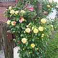 jardin du Plouys *