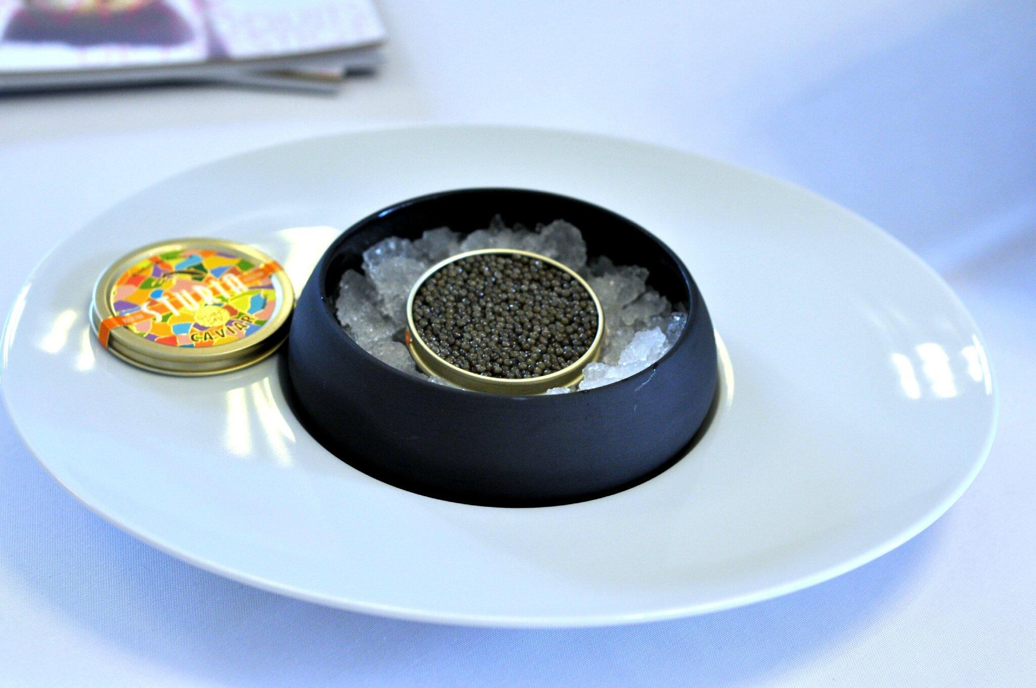 Découverte du caviar Sturia de A à Z