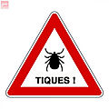 Attention aux tiques !