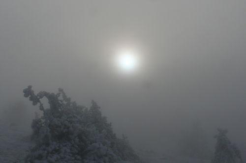 2008 11 20 Photo prise au Mont Mézenc (10)