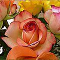 Bouquet de roses 5d