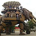 elephan1