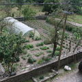 2008 07 30 Le jardin vu du grenier