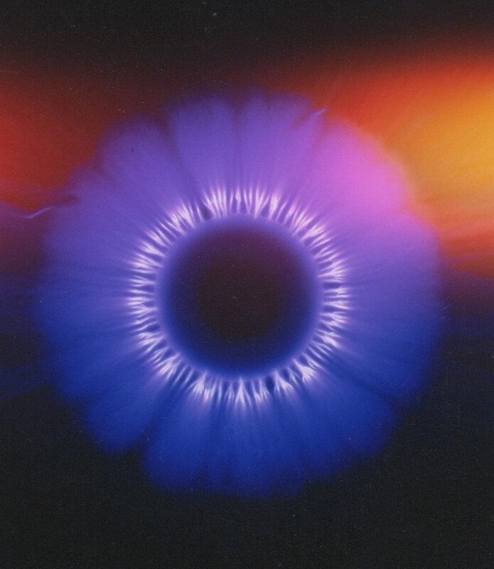 violet 135