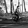 vélo, quai de seine_1297