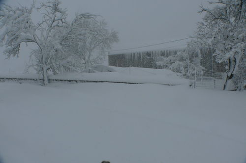 2008 12 14 Blanc de neige lors de l'épisode conséquent