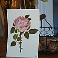cartes peintes -rose