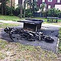 scooter et déchets verts