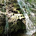 Gémenos (13) Parc de Saint Pons