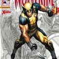 <b>Wolverine</b> V3 2012-2013