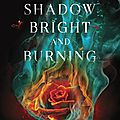 A shadow bright and burning [kingdom on fire #1] de jessica cluess