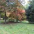 L automne au jard
