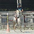 Jeux équestres manchots 2013 - jeux