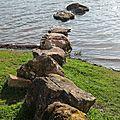 Photos JMP©Koufra 12 - Lac Salagou - 11032018 - 014