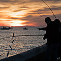 La pêche miraculeuse...