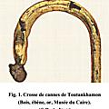 CHIRURGIE XX & INFECTIOLOGIE IX - Tétanos céphaliques