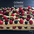 genoise fruits rouge 060