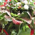 Salade de tomates aux petits oignons