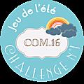 macaron-jeu-ete-2014-challenge-1-2