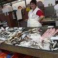 Le pays du poisson