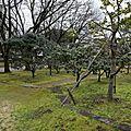Voyage au Japon Kumamoto 2015