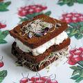 Sandwich de pain d'épice aux graines germées