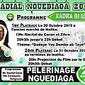 Nguédiaga 2015