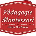 CONFERENCE SUR LA PEDAGOGIE MONTESSORI Jeudi 31 MAI