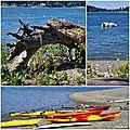 Vashon Island Burton Acres Park 2