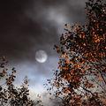 La lune d'octobre