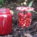 Confiture de fraises des bois à la map