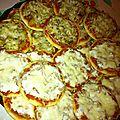 Minis pizzas thon crème fraiche et poulet pomme de terre oignon !