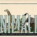 Animalia voyage animé au pays des animaux