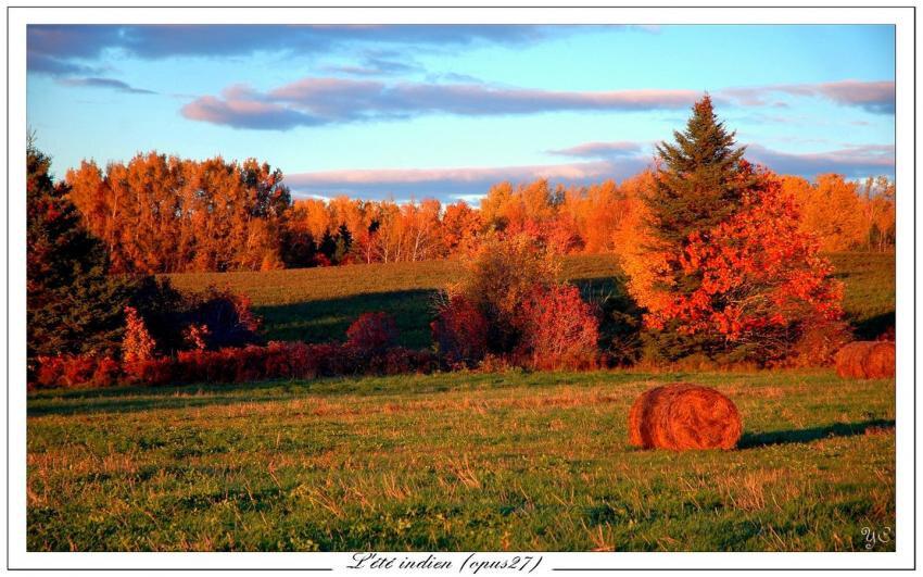 Prétexte d'automne